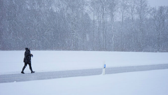 Prognoza pogody na dziś: spadnie do 10 cm śniegu. Mocniej powieje
