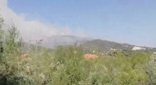 Pożar lasów sosnowych na Zakintos